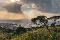 Haifa i Bahajski vrtovi